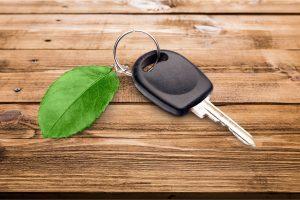 car key with leaf